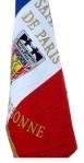 drapeauAASPP91 copie
