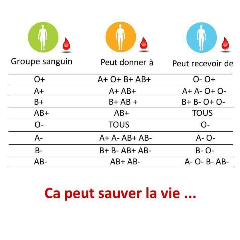Groupe sanguin.. très instructif   AASPP91